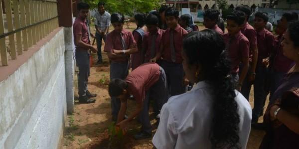 Planting School